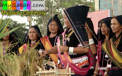 Pesta Kaamatan Launching