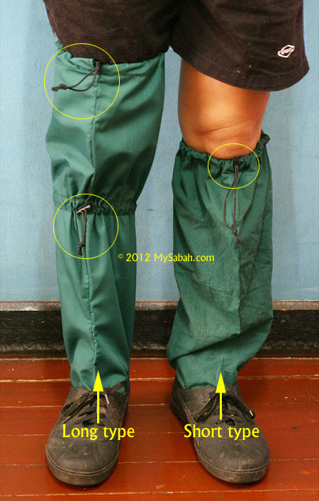 long vs short leech socks