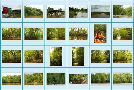 Photo gallery of Bongawan river cruise