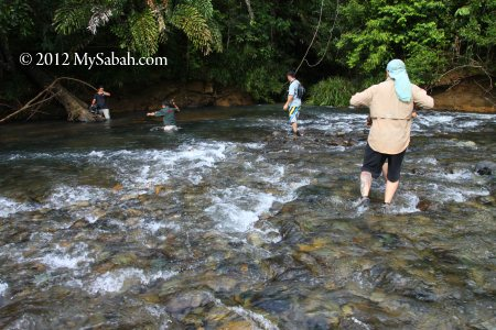 crossing Meliau River
