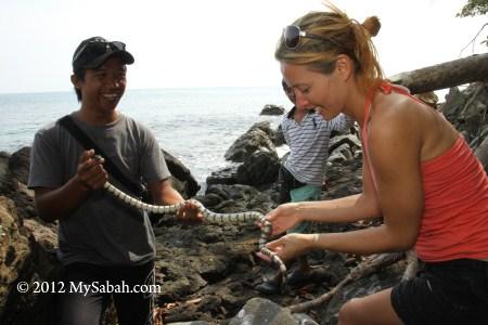 tourist holding a yellow-lipped sea krait