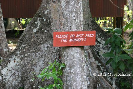 Signage: Do not feed the monkey