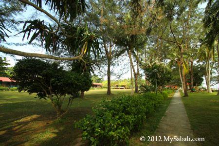 garden of Pulau Tiga Island