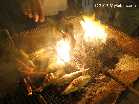 BBQ fishes