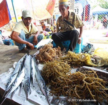 seaweed in tamu