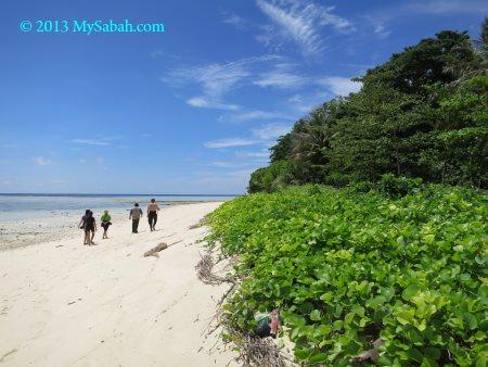 beach of Sipadan Island