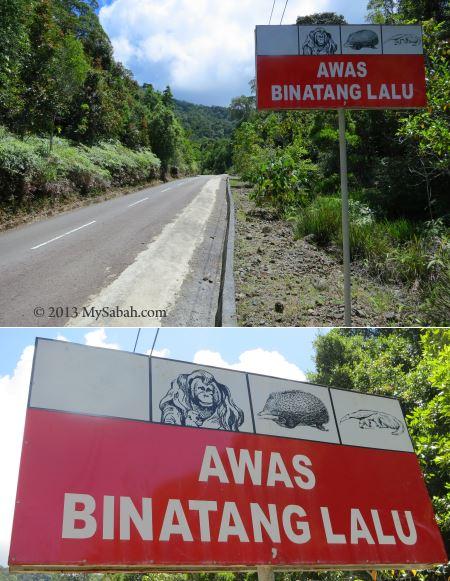paved road to Tower of Heaven (Menara Kayangan)