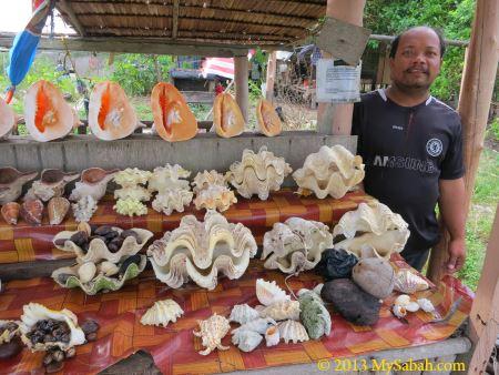seashell stall