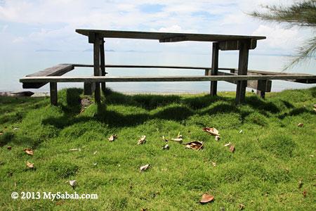 Silam grass