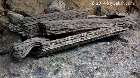 Belian wood coffin