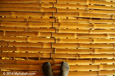 floor of longhouse