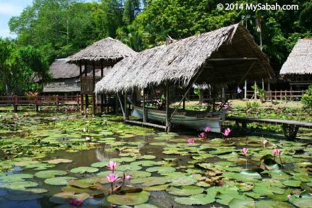 heritage village of Sabah Museum