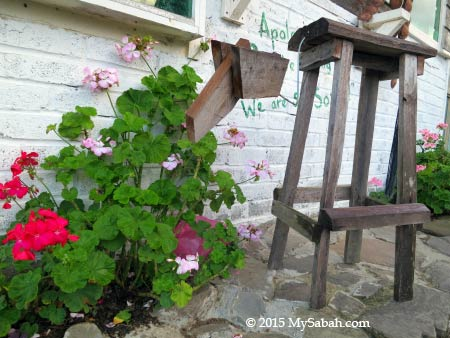 flowers and 4-leg chair