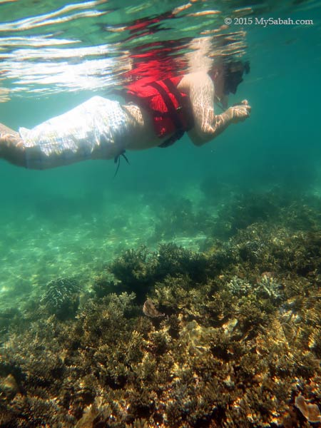 snorkelling and photo taking