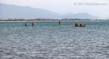 Stand-up paddle-boarding group on the sea