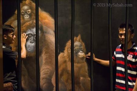 orangutan in jail at 3D Wonders Museum