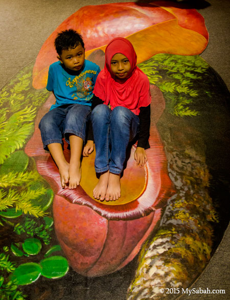 children in 3D floor painting of Nepenthes Rajah pitcher plant