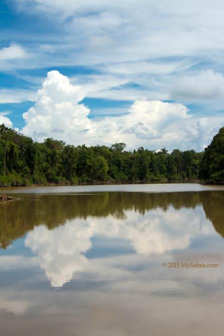 cloud reflection on Tanjung Bulat Oxbow Lake