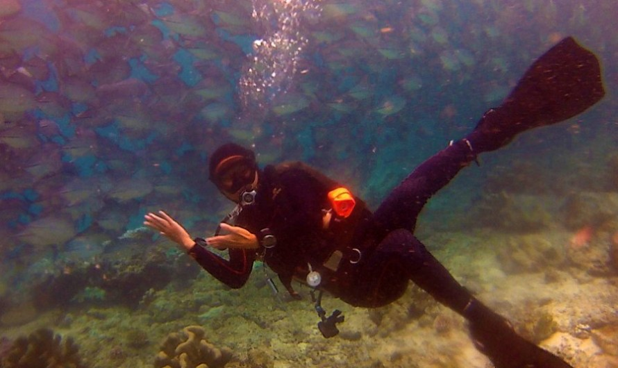 Scuba Diving at Mabul and Sipadan Island of Semporna