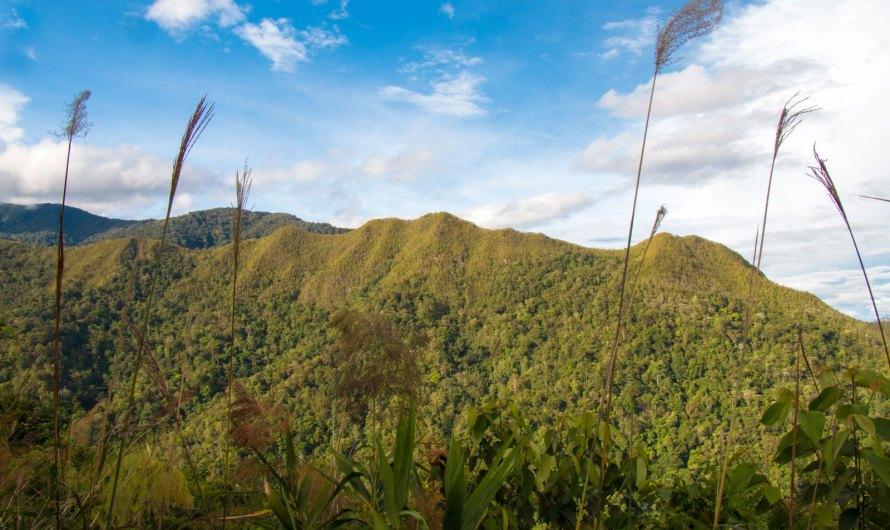 Climbing Mount Wakid (Gunung Wakid)