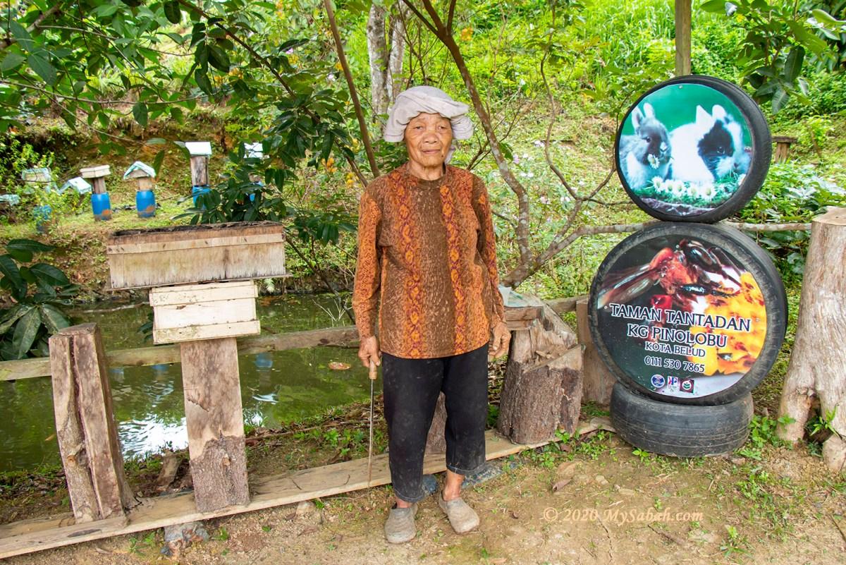 Stingless Bee (Kelulut) Farm in Kampung Pinolobu, Kota Belud