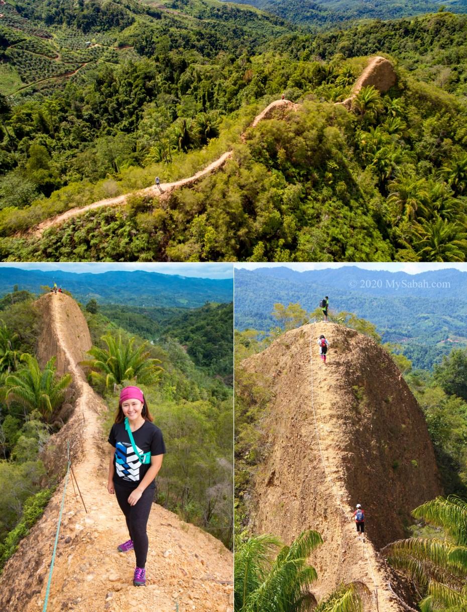Bukit Lugas between Tambunan and Keningau (Apin-Apin)