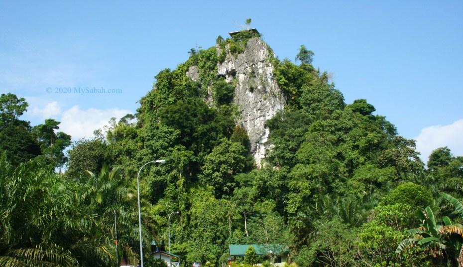 Batu Tulug Hill in Kinabatangan