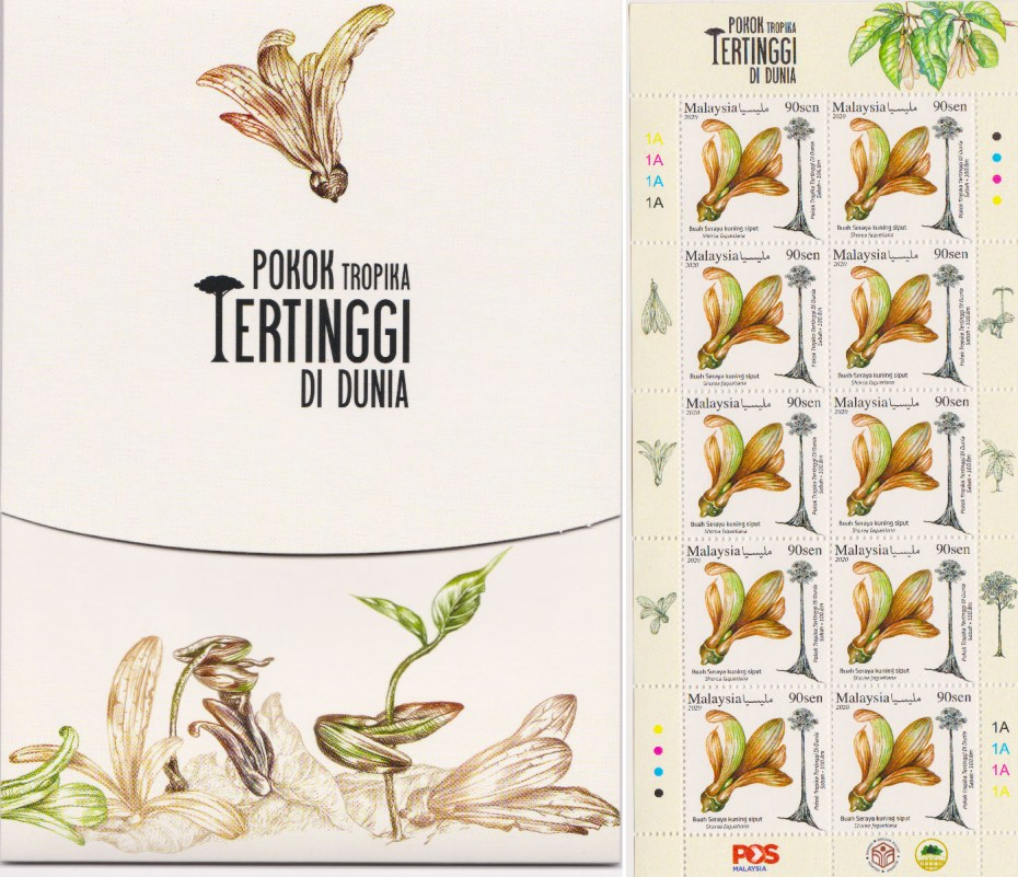 Left: the front cover of stamp folder of World's Tallest Tropical Tree (Pokok Tropika tertinggi di dunia). Right: Stamp sheet (10 pieces of 90-cent stamps). The picture in the stamp is the winged fruit of Shorea faguetiana