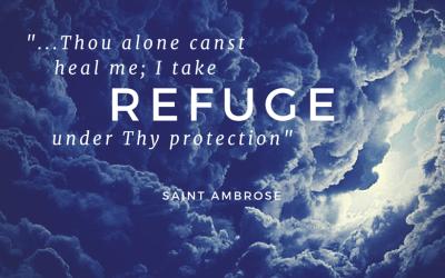 Taking Refuge …