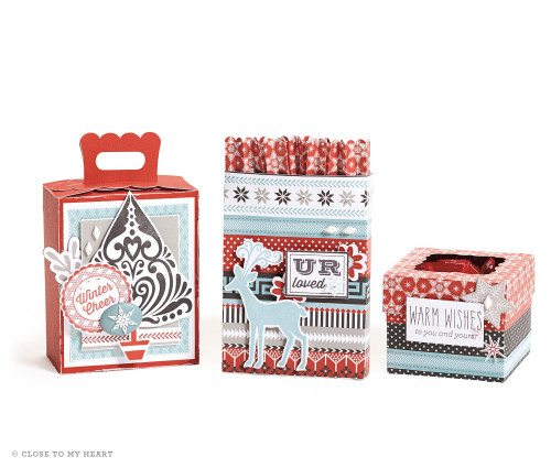 14-ai-warm-wishes-cricut-boxes-and-card