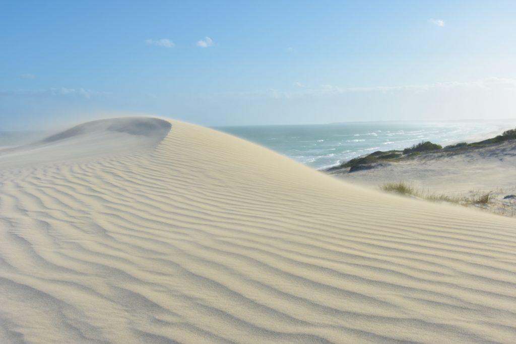 Le dune di De Hoop
