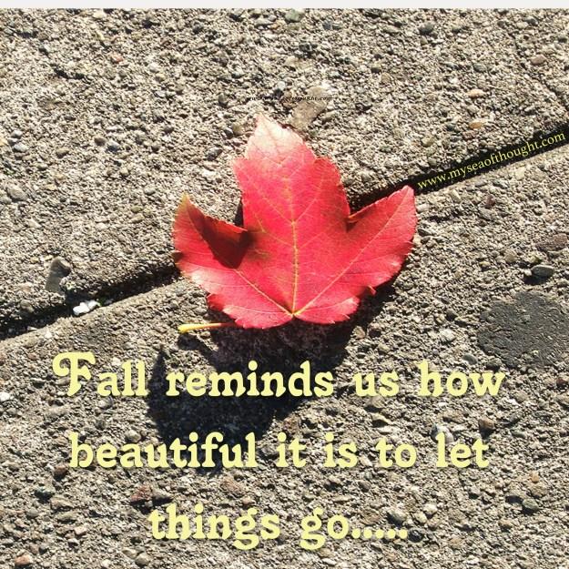 fall-reminds-001