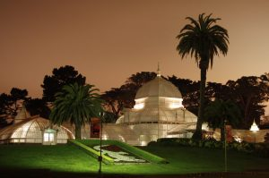 Conservatory, sf, night