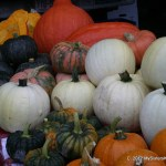 In the company of pumpkins at the Farmer's Market