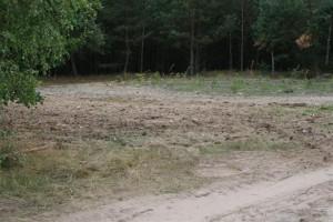 Widok po zakończeniu prac i przywróceniu terenu mogilnika do stanu pierwotnego