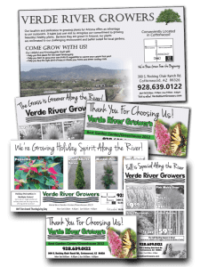 Layout and Design for Verde River Growers