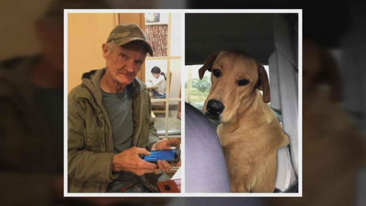 Dog_shoots_owner_2_60834526_ver1.0_1541100567436.jpg