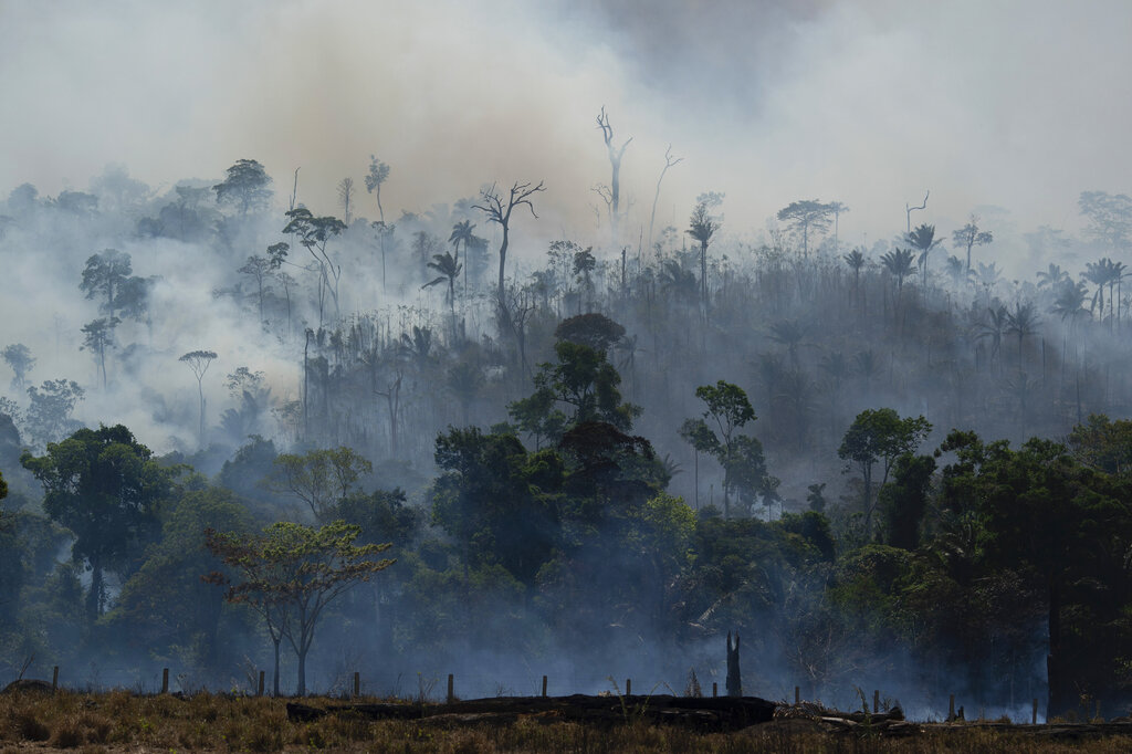 a5177b828d44e Respiratory ailments hit in Amazon as Brazil spurns G-7 aid ...