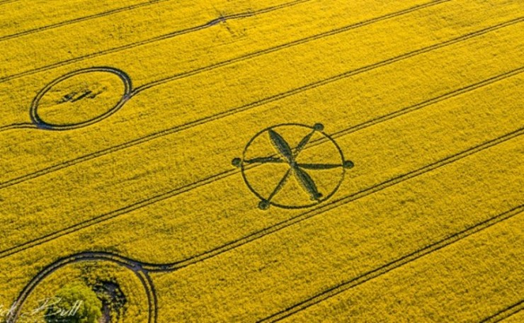 The first crop circle of 2018 appears in the english camps of the first crop circle of 2018 appears in the english camps of wiltshire united kingdom 8shares publicscrutiny Choice Image