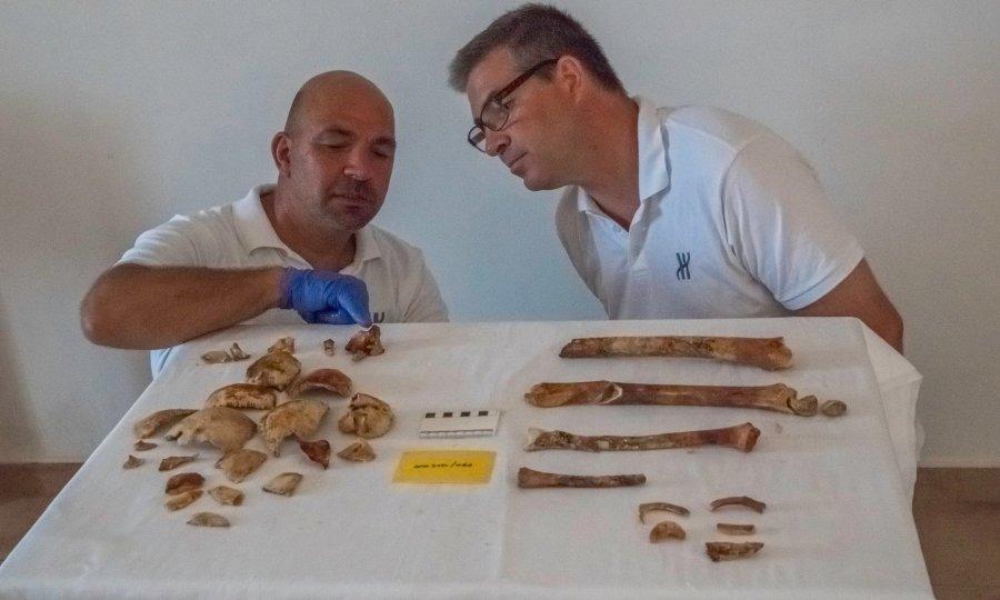 Τώρα περισσότερα από 2000 χρόνια μετά οι αρχαιολόγοι βρήκαν το σκελετό που αποκαλούν πλέον Πάμφιλος.
