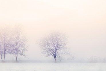 Our Thriller Pick Snow White Must Die By Nele Neuhaus