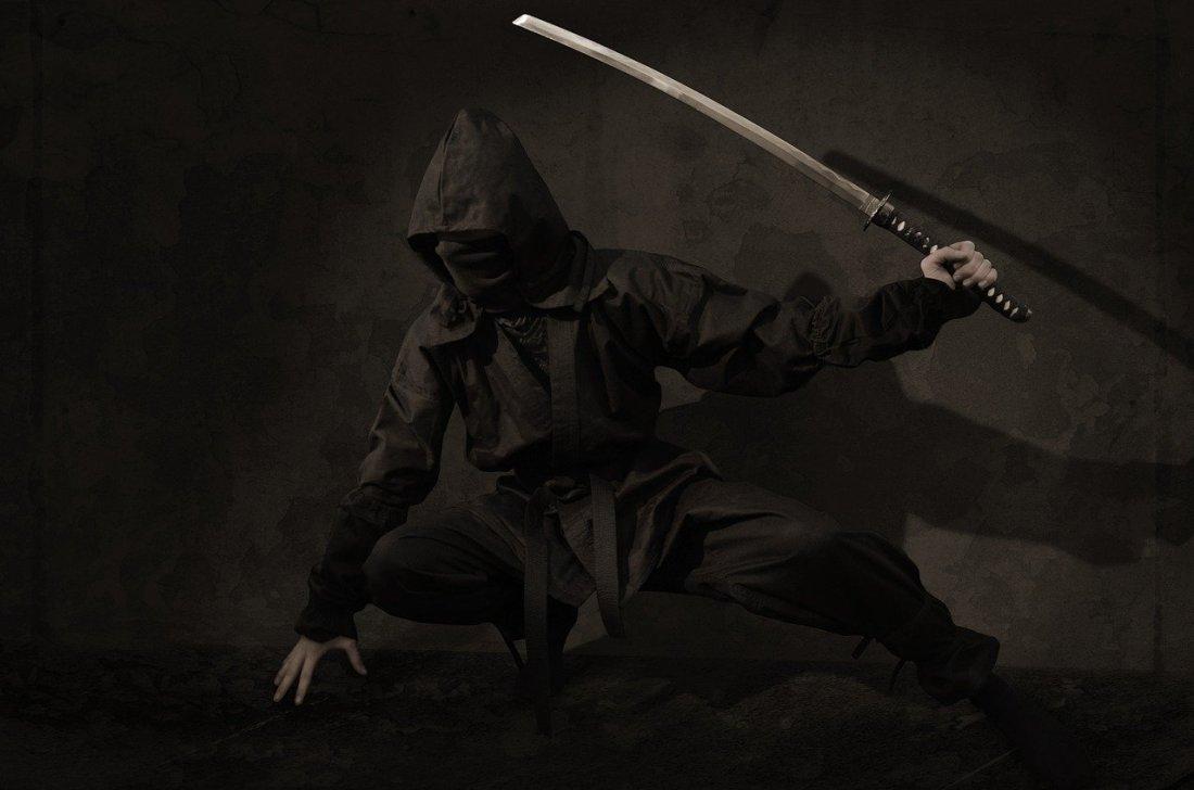 Japanese woman ninja kunoichi