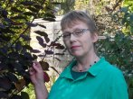 rohase piercy author conversation mystery tribune