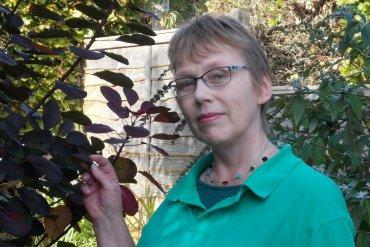rohase piercy author conversation mystery tribune