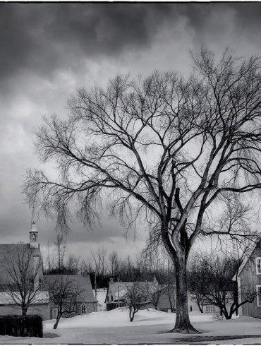 A Must-Read The Dark Winter By David Mark