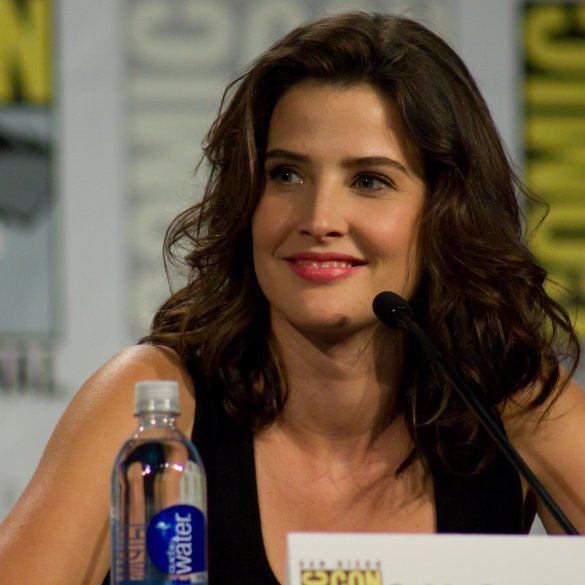 Avengers Co-Star Cobie Smulders To Play In Comics-Inspired Stumptown