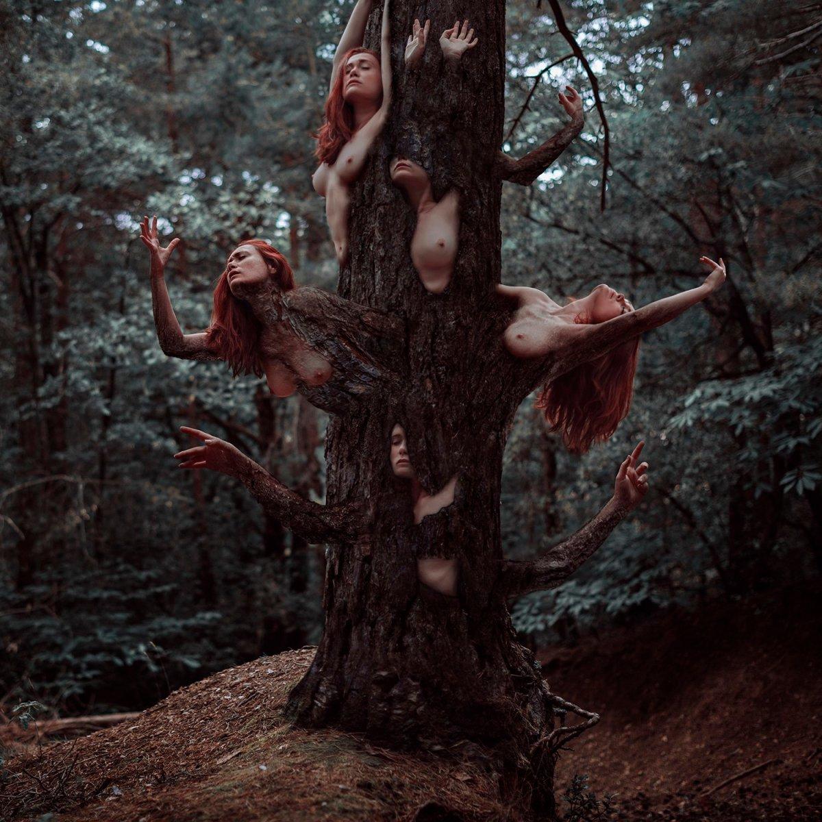Otherworldly Imagery Of Frank Diamond surreal photography Metamorfosis