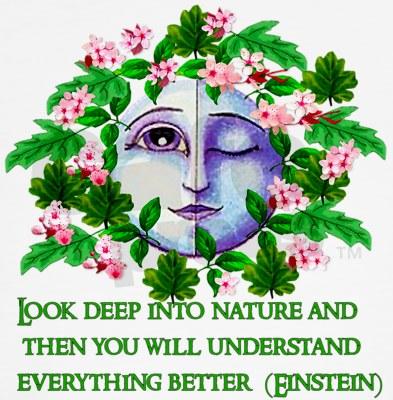 nature, einstein