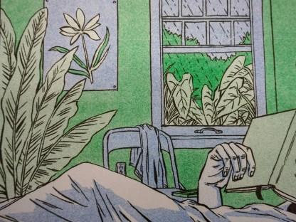 Closeup of window and plants