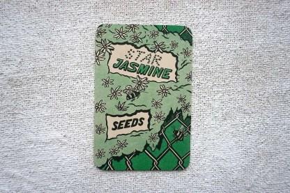 Star Jasmine seed art print